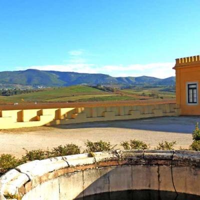 Quinta do Gradil Winery